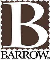 Web Design Barrow